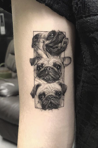 Three Pug Tattoo