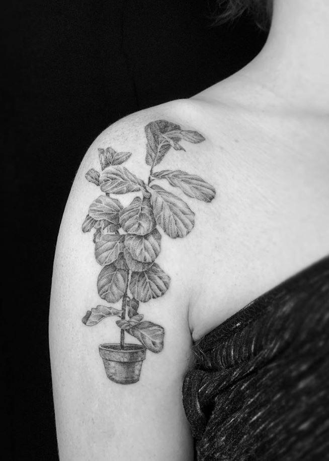 Fiddle Leaf Fig Tattoo