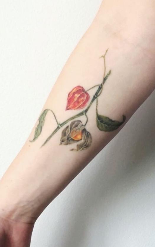Physalis Plant Tattoo